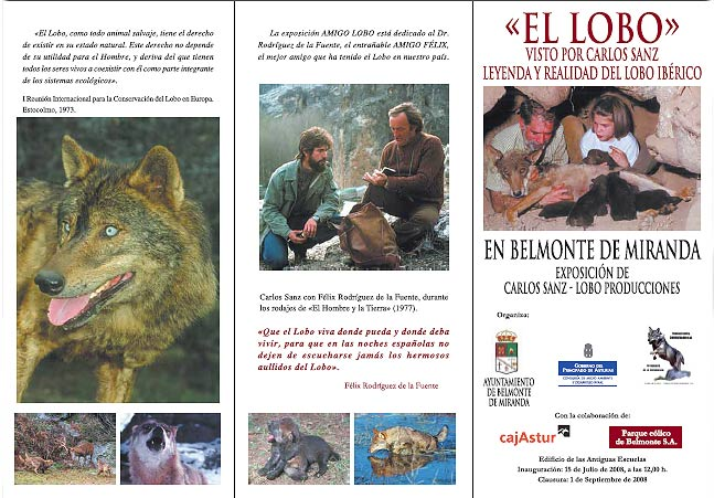 Iberian wolf exhibition in Belmonte, Asturias